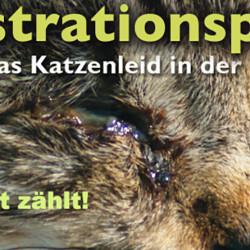 """Tierschutz ist grenzenlos – daher engagieren wir uns auch für die Pedition """"Kastrationspflicht für Freigängerkatzen in der Schweiz!"""""""