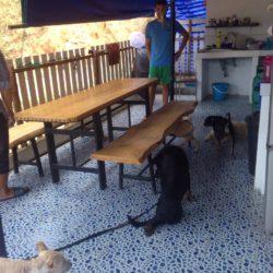 Neuer Tisch und Bänke für Besucher