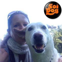 Wir danken Claudia Sigrist von Soi Dogs, Kuhn Toom und Katherine Polak