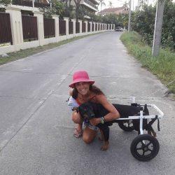 Unser Rosco trifft beim Spazieren auf Christine Losso