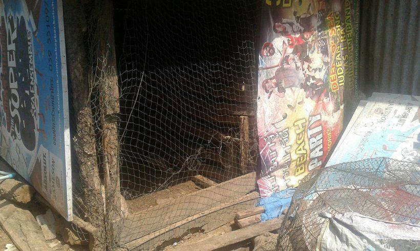 Befreiung eines Hundes der 2 Jahre eingesperrt war – die Tierquälerei hat nun ein Ende