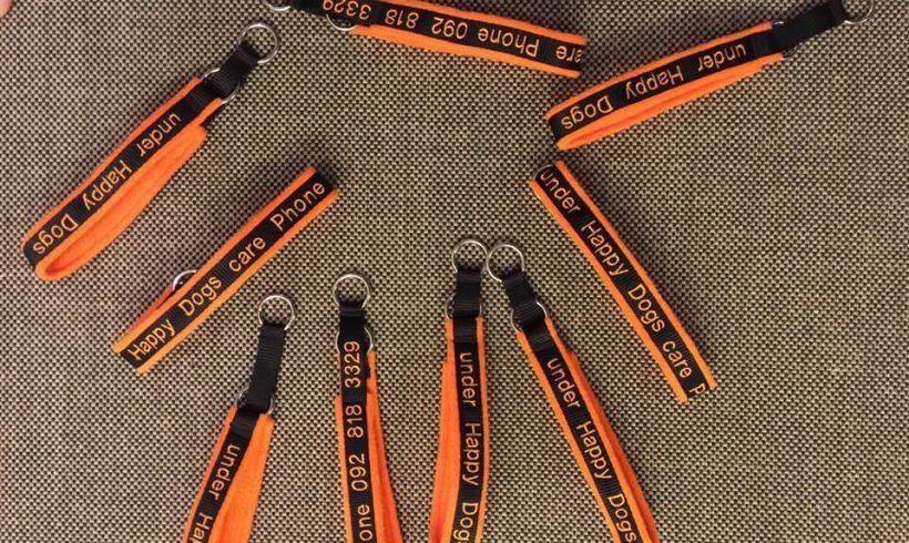 Tolle Halsbänder für Strassenhunde welche unter medizinischer Versorgung stehen