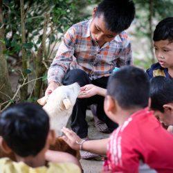 Die Kinder der Schule am Bang Baotempel lernen wie man mit Hunden umgehen sollte…….