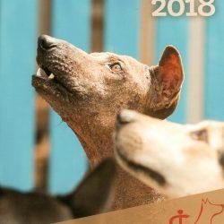 Unser Jahreskalender 2018 ist da!