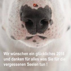 Dankbar wünschen wir ein wunderbares 2018