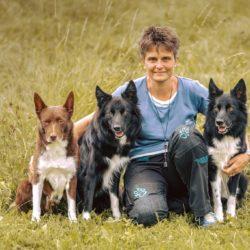 M. Allgaier – Spende Hundebettli